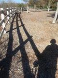 Selfie Stroll Walking Shadow Stock Photo