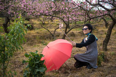 A selfie woman in peach orchard Stock Photos
