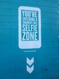 Selfie zon Arkivfoton
