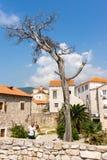 Selfies in old Budva, Montenegro Royalty Free Stock Image