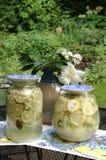 Selfmade Elder Lemonade. Make your own lemonade with elder blossoms, sugar, lemon slices and water. That tastes iike elder royalty free stock photography