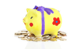 Selfmade piggybank with coins Royalty Free Stock Image