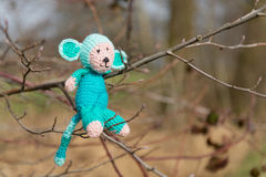 Selfmade stuffed monkey in tree. Crocheted selfmade monkey toy sitting in tree Stock Photos