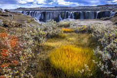 Selfoss waterfall Royalty Free Stock Images