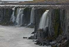 Selfoss Waterfall, Iceland. Selfoss Waterfall, Jokulsargljufur National Park, Iceland Royalty Free Stock Photo