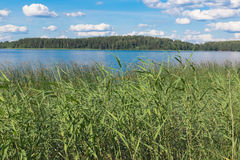 Seliger in the summer. Royalty Free Stock Photos