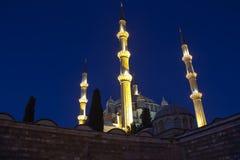 Selimiye moské Arkivbild