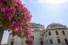 Selimiye Mosque Yusuf Aga library Konya Turkey royalty free stock photos