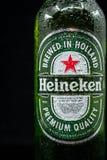 Selinsgrove, Pensilvania - 18 marzo 2019: Una bottiglia della birra di Heineken isolata contro un fondo nero fotografia stock libera da diritti