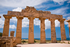 希腊selinunte寺庙 图库摄影