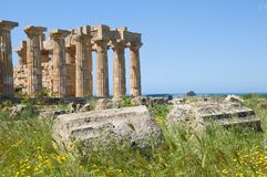 Selinunte,Sicily, Italy Stock Photography