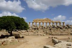 Selinunte, Sizilien Italien Lizenzfreies Stockfoto