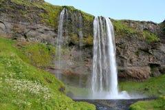 Seljalandfoss秋天在冰岛。 库存照片