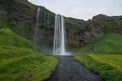 Seljalandfoss i Island Royaltyfri Fotografi