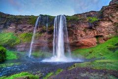 Seljalandfoss vattenfall. Royaltyfri Bild