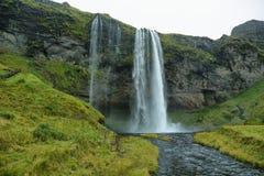 Seljalandfoss vattenfall Arkivfoto