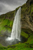 Seljalandsfoss瀑布,冰岛 免版税图库摄影