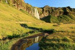 Seljalandsfoss瀑布,在Eyjafjallajokull冰川附近在南冰岛 免版税库存照片