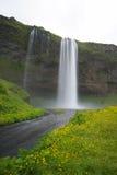 Seljalandsfoss, самые красивые водопады, к югу от острова стоковые изображения rf