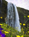 You need to see this waterfall if you`re in Iceland royalty free stock photos