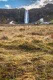 Seljalandsfoss i vintersäsongen av Island arkivbild
