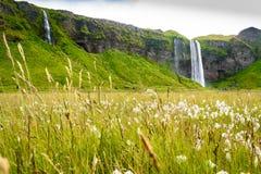 Seljalandsfoss. Iconic view of the Seljalandsfoss waterfall in Iceland stock photography