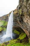 Seljalandsfoss III 图库摄影