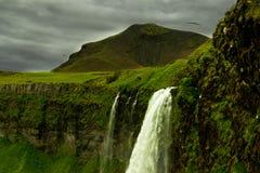 Seljalandsfoss, Islande Photo stock