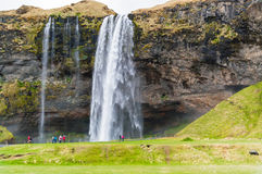 Seljalandsfoss mim Fotografia de Stock Royalty Free