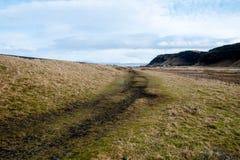 Seljalandsfoss na estação do inverno de Islândia imagem de stock royalty free