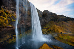 Seljalandsfoss que sorprende Foto de archivo libre de regalías