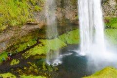 Seljalandsfoss vattenfall Royaltyfri Foto