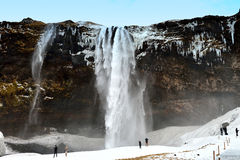 Seljalandsfoss vattenfall, Island Arkivfoto