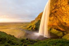 Seljalandsfoss-Wasserfall bei Sonnenuntergang, Südwesten Island Lizenzfreies Stockfoto