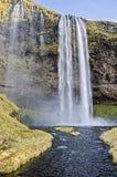 Seljalandsfoss-Wasserfall Island Lizenzfreie Stockfotos