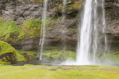 Seljalandsfoss waterfall - Iceland. Stock Photography