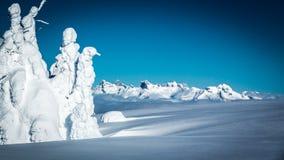 Selkirk山脉 图库摄影