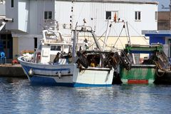 Trawlers fishing boats going to dock after work. Royalty Free Stock Photo