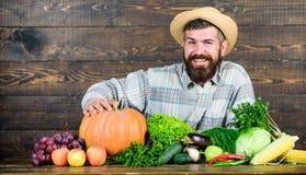 Sell vegetables. Local market. Locally grown crops concept. Homegrown vegetables. Buy vegetables local farm. Farm market. Harvest festival. Man bearded farmer stock images