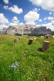 Sella mountain stock photos