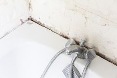 Sellante casero repugnante de la teja del cuarto de baño de la ducha con el molde y el moho foto de archivo
