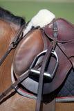 Selle classique anglaise d'équitation sur un cheval brun Image libre de droits