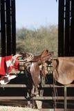 selle de cheval Image stock