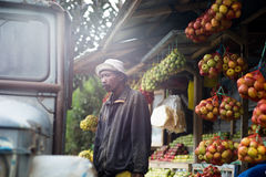 The seller of apples in the mountains of Indonesia Stock Images