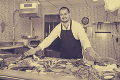 Seller in black apron showing fish on his counter Stock Photography