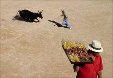 Seller to bullfighting. The seller of chips to bullfighting Stock Photos