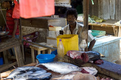 Seller at a fish  market Royalty Free Stock Photo