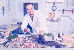Seller holding fish Royalty Free Stock Photos