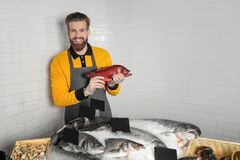 Seller holding fresh fish. In supermarket Royalty Free Stock Images