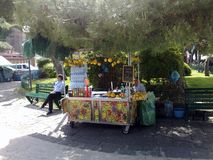 Seller of Lemon Granite, in Sorrento Royalty Free Stock Images